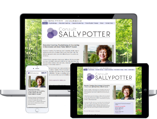 Sally Potter Executive Coaching and Counselling Website