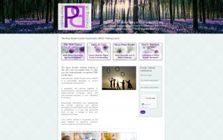 What are the steps of website design The new PBSP site