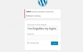 Resetting Wordpress Password